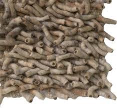 wormfeltedrug